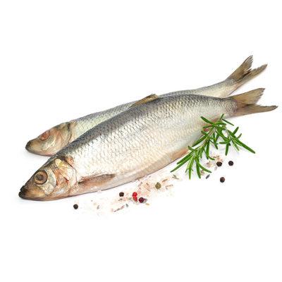 Ryby solone, małosolne